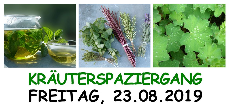 Gesunde Gemeinde St. Lorenz - Veranstaltung Kräuterspaziergang 2019