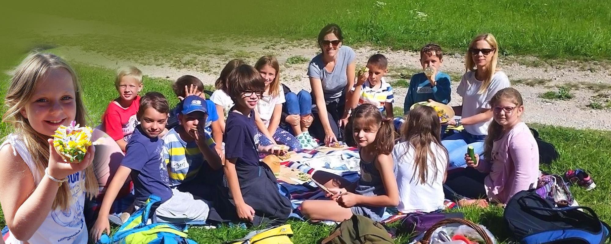 Kräuterwanderung VS Mondsee - Gesunde Gemeinde Mondsee